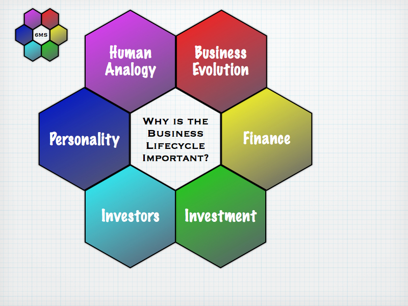 The Six facets of the Business LifeCycle
