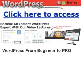 Svdp WordPress from Beginner to Pro